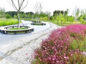 通州区北运河畔建起一座景观公园