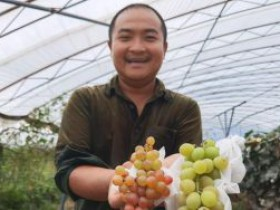 一千万投资农业 通州漷县镇父子俩想种点儿健康果子给大伙吃